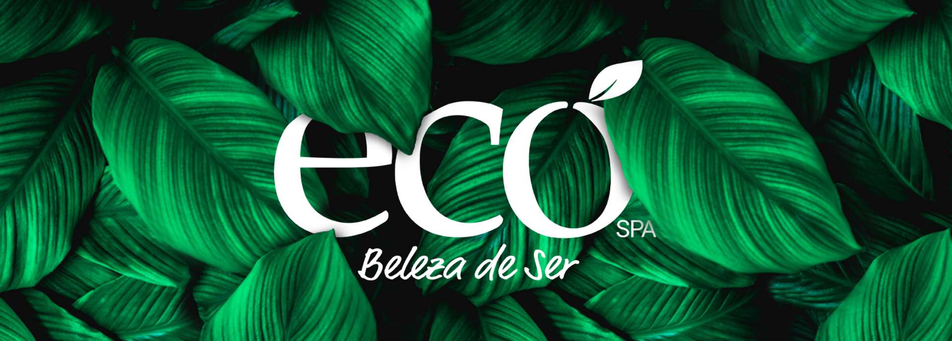 BANNER-SITE-ECO